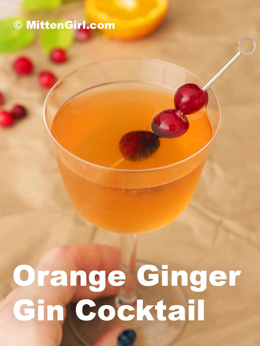 Orange Ginger Gin Cocktail